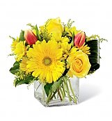 Flower Bouquets: Spring Sunshine Bouquet